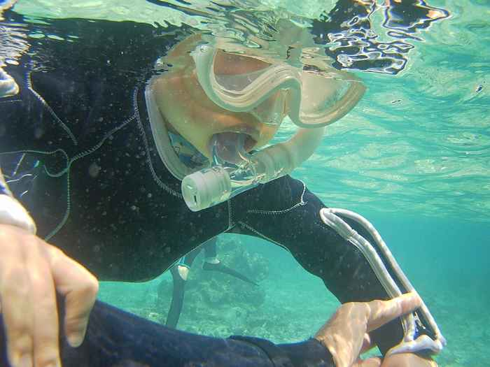 顔をつけて水中を覗き始めていきます。