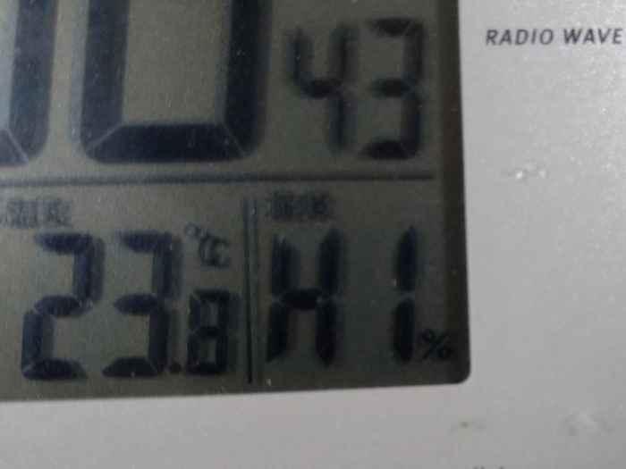 湿度が高い一日です。