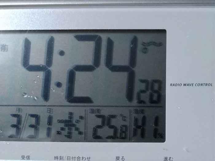 やっぱり湿度が高いです