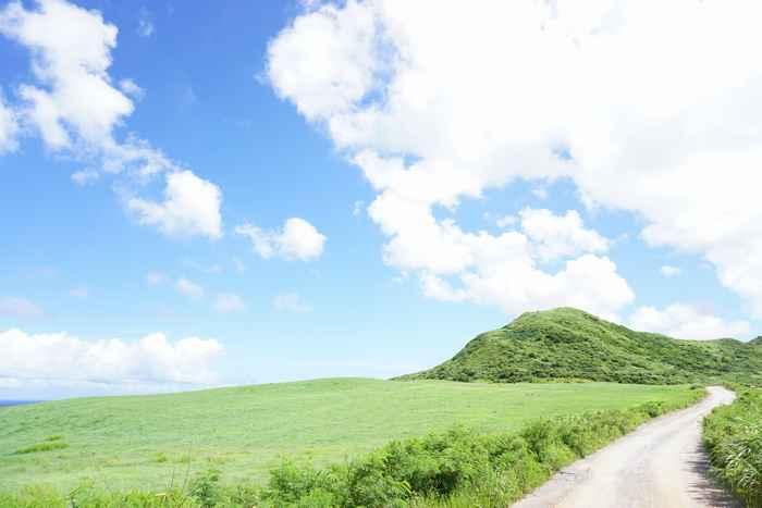 梅雨、5月6月の石垣島の陸の風景