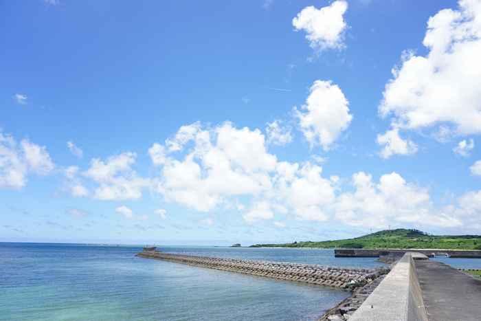 伊野田漁港の6月