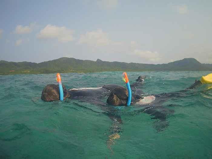 青空と穏やかな石垣島の海を楽しみました
