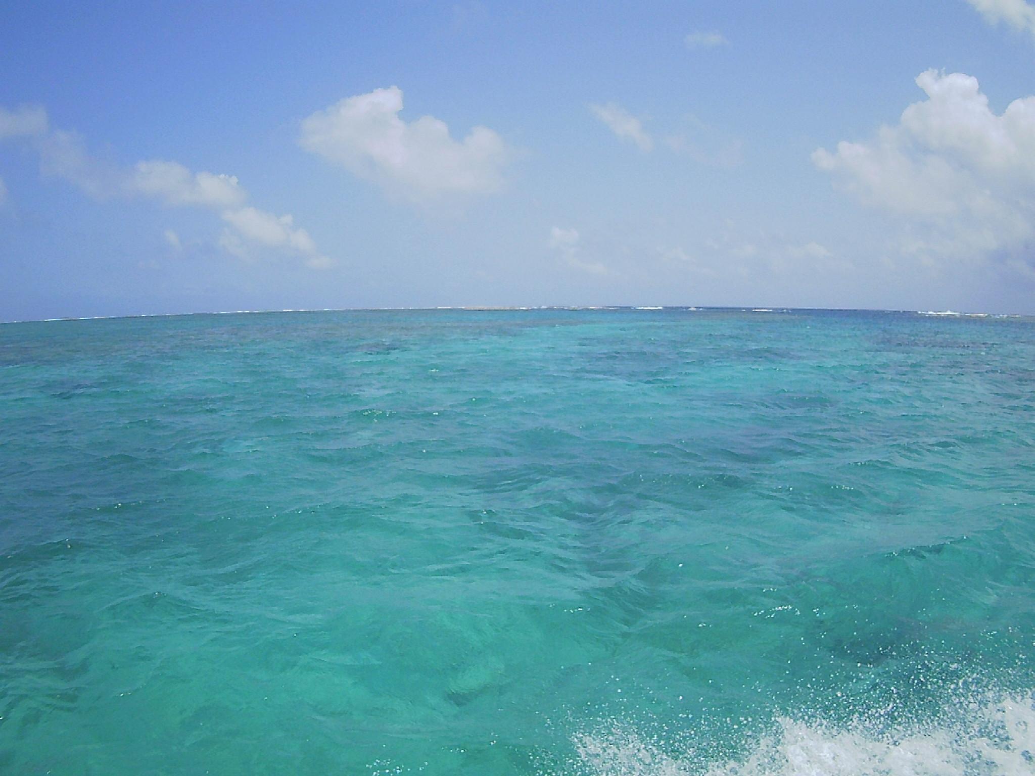 本日も青空の登場、穏やかな海です