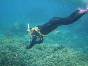 体育会シュノーケリング!それでも石垣島の海は透明度抜群です!