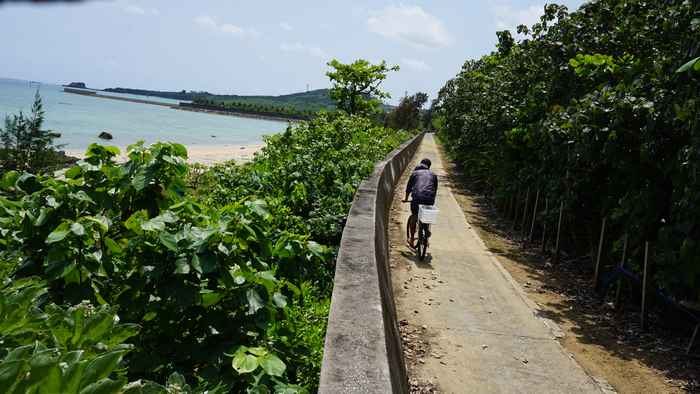 堤防沿いを自転車で
