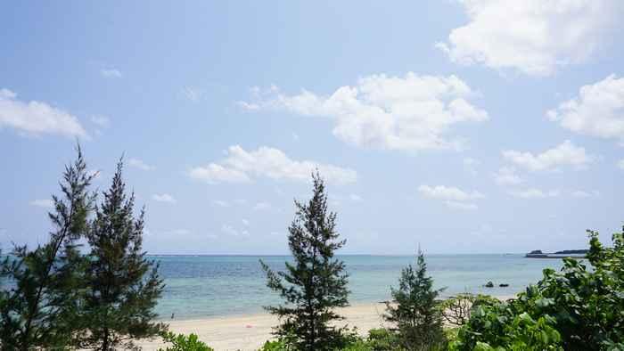 堤防沿いから見る石垣島の海