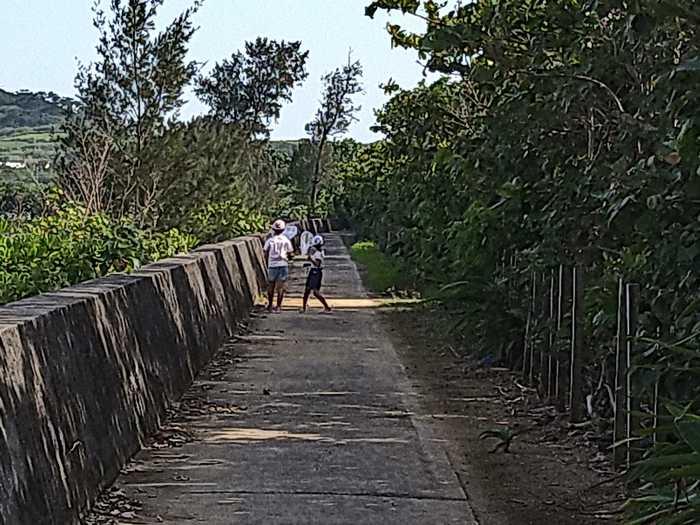 堤防沿いの散歩道