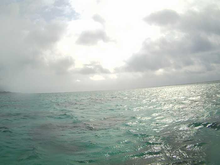 曇りの一日、一瞬の太陽さん