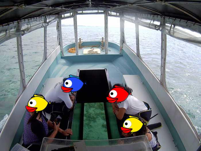 初めての石垣島、Mさんご家族です