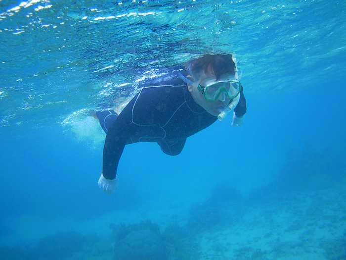 軽やかな泳ぎに大変身です。