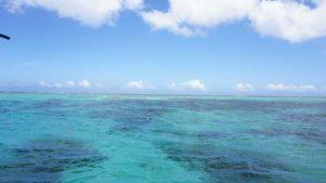 シュノーケリングは続く石垣島、今日も絶好調の海です♪