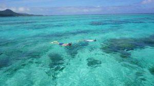 河童ゴールド免許!石垣島の水中世界を縦横無尽です!