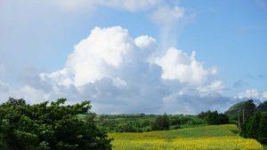 シュノーケリングの大敵は風!いよいよ梅雨明け前の強い南風の始まり?