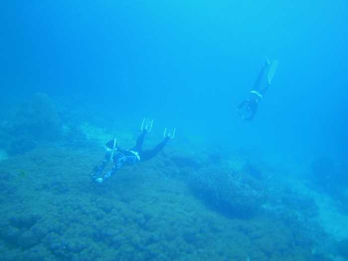 水中10mライン!