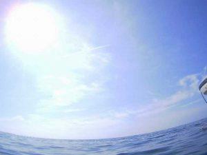 石垣島はシュノーケリング日和が続きます!