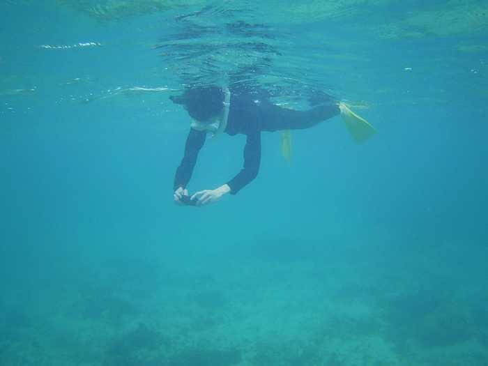 ゆったり泳いで楽しむスタイル