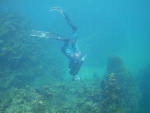 石垣島の水中世界は幼魚の季節♪シュノーケリングを満喫です♪