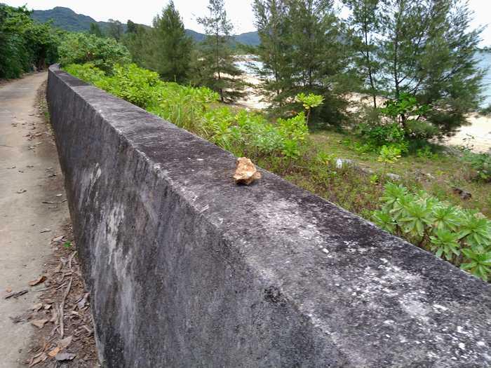 堤防の上に、石が一個