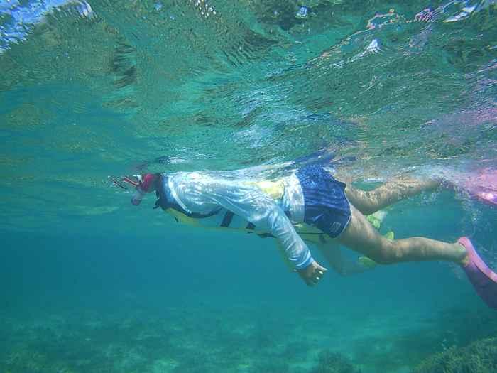 慣れた泳ぎのお姉ちゃん
