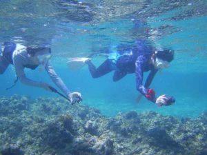 脱初心者、基本を押さえてシュノーケリング!石垣島は穏やかな海です