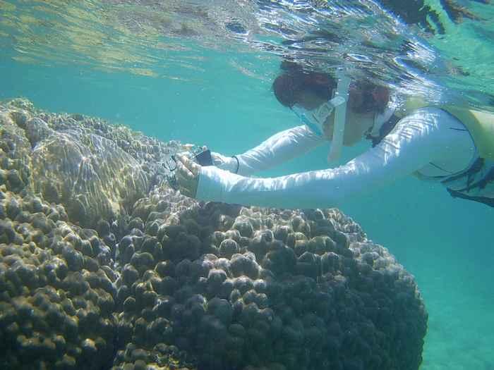 ハマサンゴで撮影モード