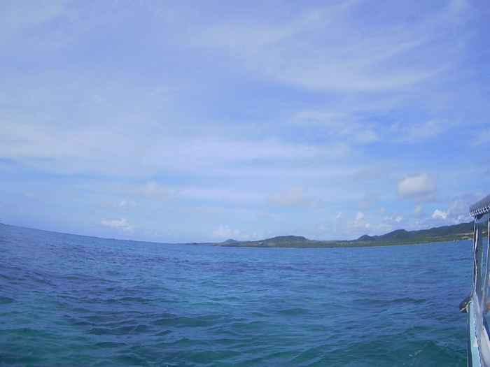 今日も晴れの石垣島です。