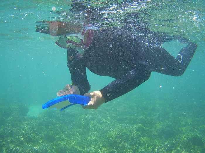 水中ノートでコミュニケーション