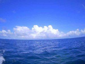 前日ご予約、そして石垣島旅行最終日といえばシュノーケル♪