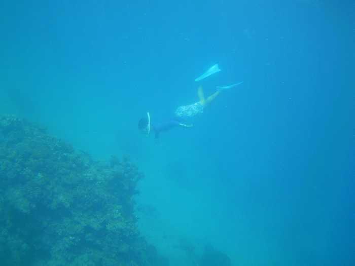 深場のストンと潜っています。