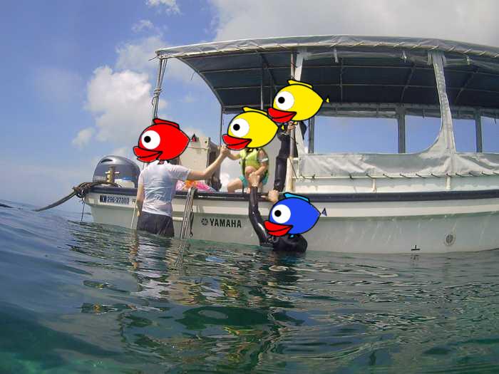ボートから飛び込みのサラちゃん。