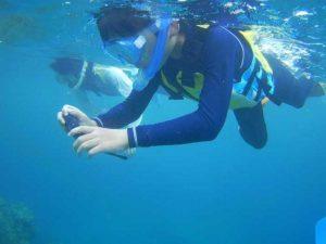 海好き大集合!石垣島の海は期待を裏切りません♪