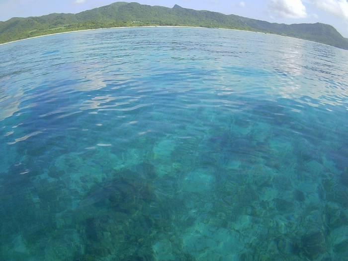 穏やかなベストコンディションの海です