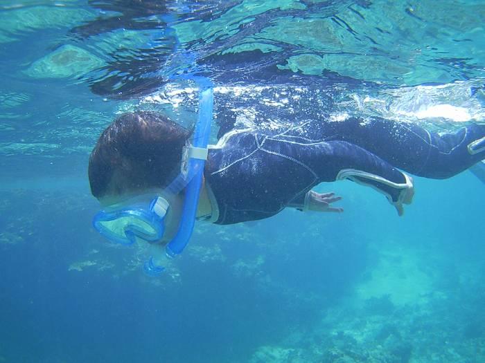 無敵の泳ぎです。