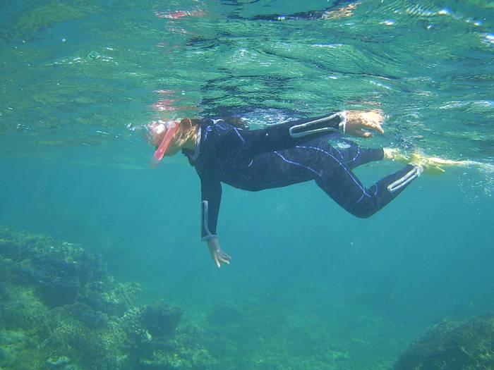 一人で泳ぎ始めています。