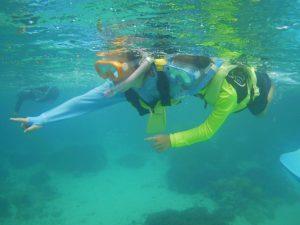 石垣島の海、家族水入らずの貸切シュノーケリング