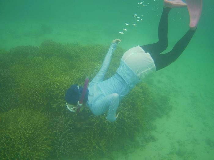 軽やかに水中世界へ