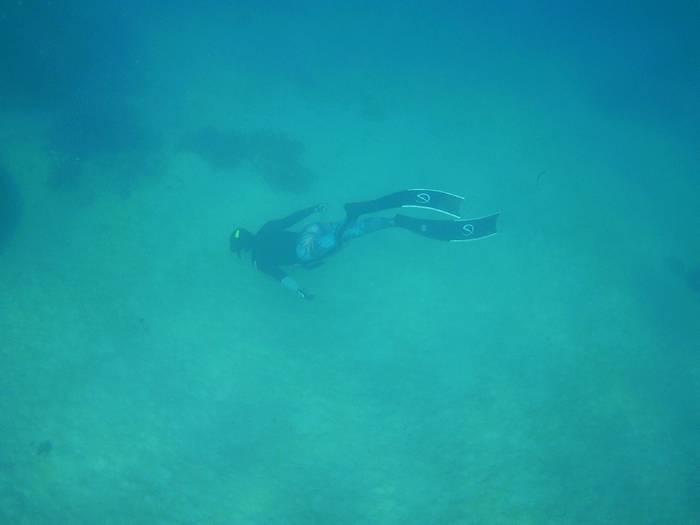水深5mラインの砂地にドボン