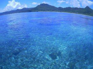 夢のようなひととき♪穏やかな石垣島の海を当日予約でシュノーケリング!