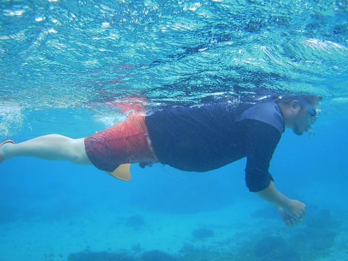 ゆったり水中を楽しんでいます。
