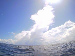 初心者からベテランさん、ちびっこのマスクデビュー!石垣島の海を楽しみました!