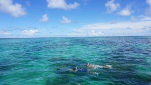シュノーケリングのコツ、耳抜きが出来れば石垣島の水中世界はもっと楽しく!