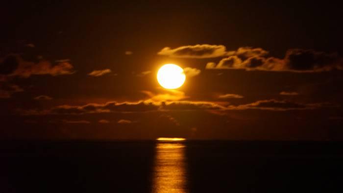 十五夜+一日のお月さん