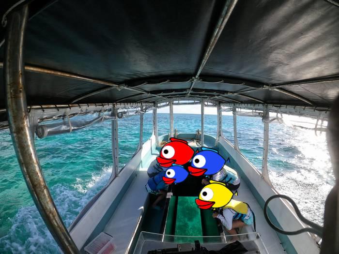 グラスボートでシュノーケリング