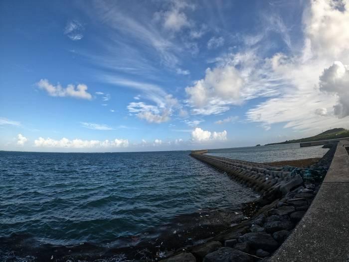 堤防沿いをお散歩