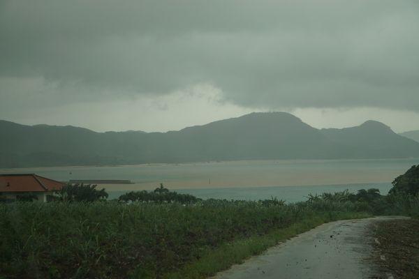 土砂降りの大雨で。