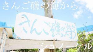 雨の時ほどシュノーケリング! 久々に曇りの石垣島です