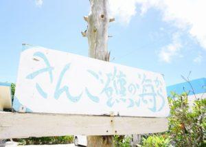 石垣島北部、東海岸のシュノーケリングエリアは新規開拓ポイント!