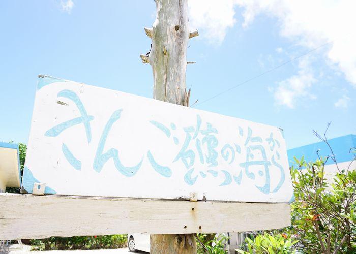 石垣島のシュノーケルショップ さんご礁の海から