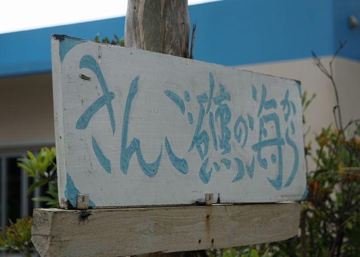 シュノーケルショップさんご礁の海からの看板