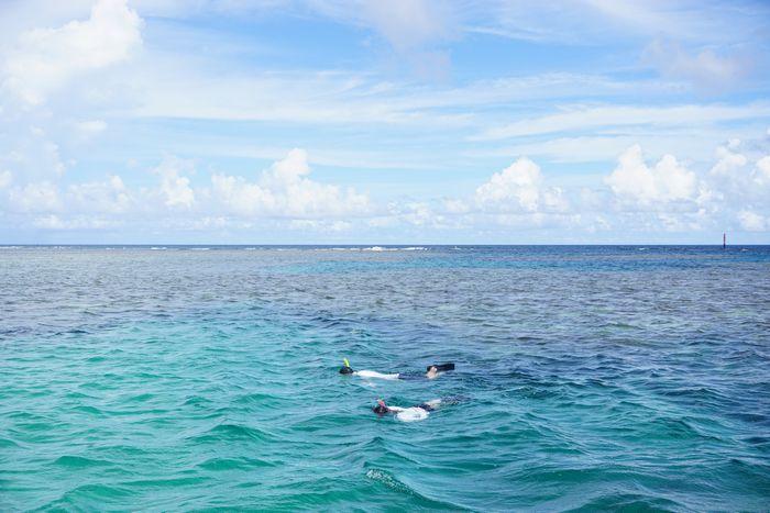 石垣島の海を半日シュノーケル